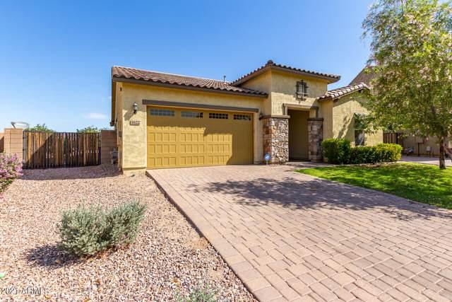 3622 E Carob Drive, Gilbert, AZ 85298 (MLS #6245917) :: Conway Real Estate