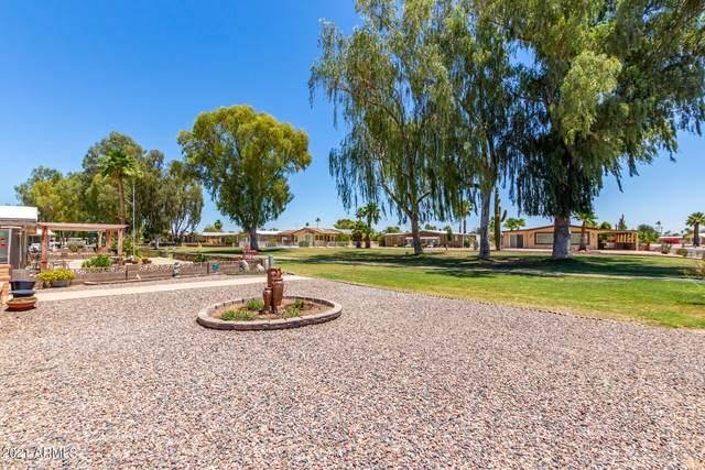 26633 S Lakeview Drive, Sun Lakes, AZ 85248 (MLS #6245994) :: Yost Realty Group at RE/MAX Casa Grande