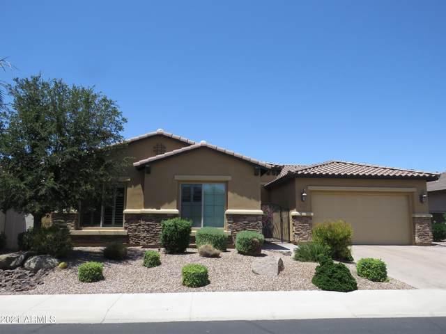 3960 E Nolan Drive, Chandler, AZ 85249 (MLS #6246033) :: Yost Realty Group at RE/MAX Casa Grande