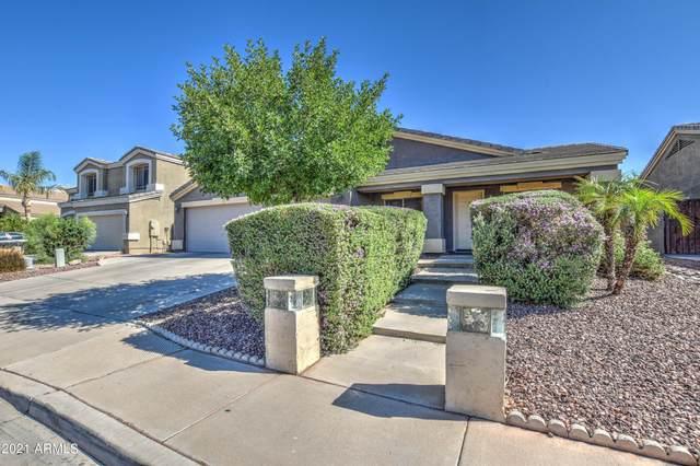 8362 W Berridge Lane, Glendale, AZ 85305 (MLS #6246126) :: Yost Realty Group at RE/MAX Casa Grande