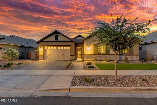 4458 E Skousen Street, Gilbert, AZ 85295 (MLS #6246179) :: Yost Realty Group at RE/MAX Casa Grande