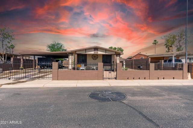1008 S 3RD Avenue, Avondale, AZ 85323 (MLS #6246203) :: Zolin Group