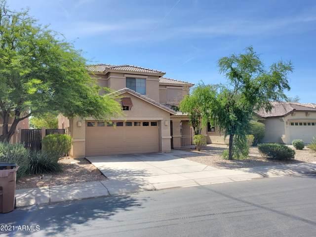 29285 N Yellow Bee Drive, San Tan Valley, AZ 85143 (MLS #6246226) :: Klaus Team Real Estate Solutions