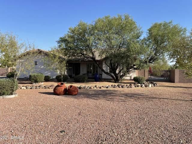 3031 W Pinnacle Vista Drive, Phoenix, AZ 85083 (MLS #6246245) :: Lucido Agency