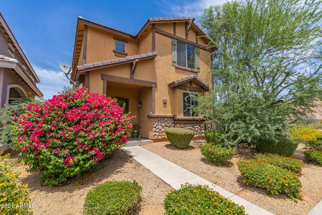 3774 E Kristal Way, Phoenix, AZ 85050 (MLS #6246246) :: Yost Realty Group at RE/MAX Casa Grande