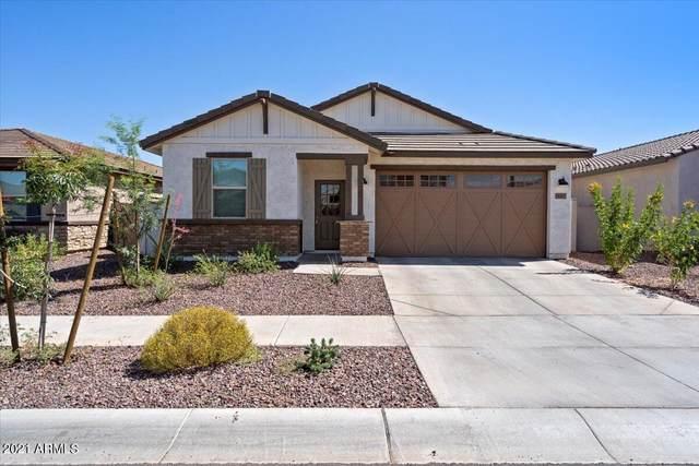14147 W Surrey Drive, Surprise, AZ 85379 (MLS #6246260) :: Executive Realty Advisors