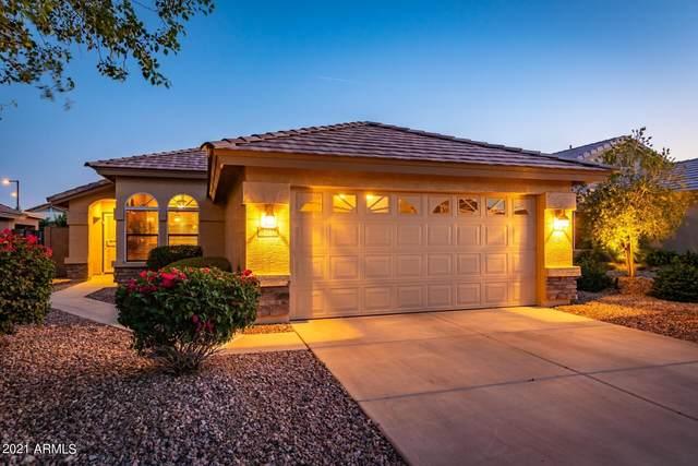 23171 W Antelope Trail, Buckeye, AZ 85326 (MLS #6246275) :: Long Realty West Valley