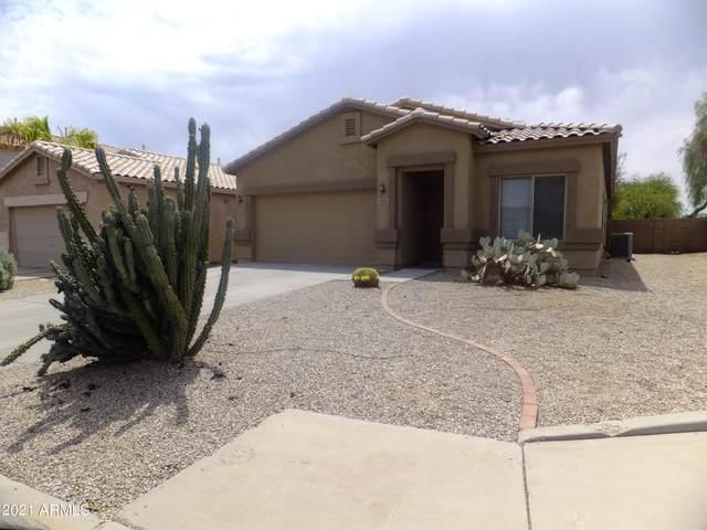 735 E Tortoise Trail, San Tan Valley, AZ 85143 (MLS #6246311) :: Yost Realty Group at RE/MAX Casa Grande
