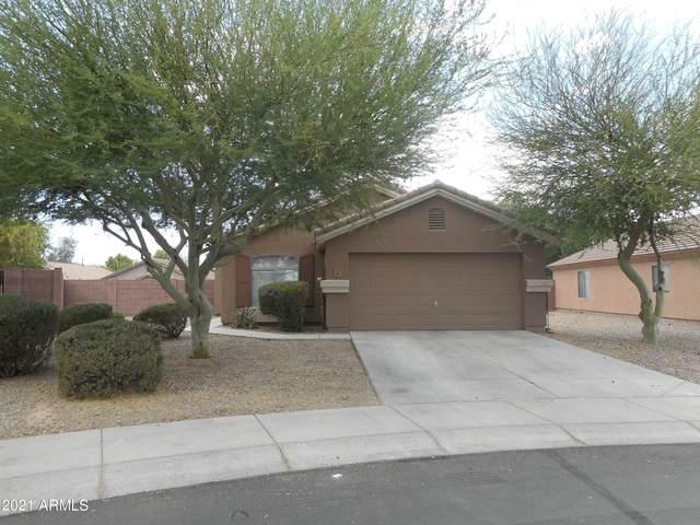 4202 N 124TH Avenue, Avondale, AZ 85392 (MLS #6246320) :: Yost Realty Group at RE/MAX Casa Grande