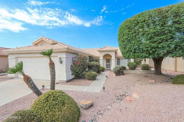 9518 E Champagne Drive, Sun Lakes, AZ 85248 (MLS #6246326) :: ASAP Realty