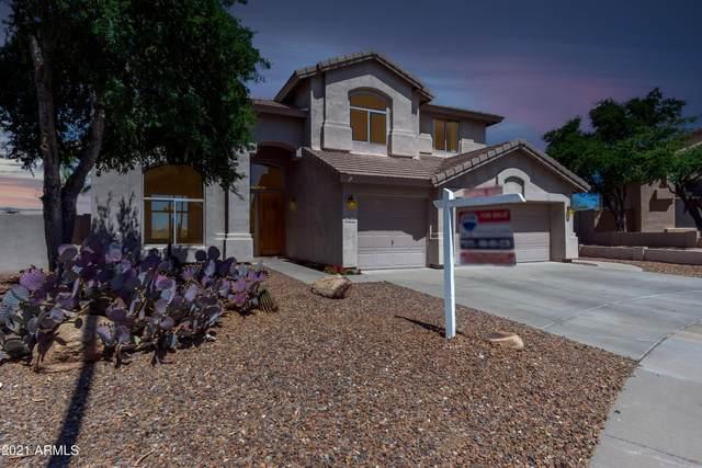 25840 N 44TH Way, Phoenix, AZ 85050 (MLS #6246356) :: Dave Fernandez Team | HomeSmart