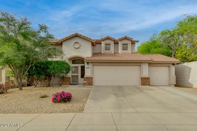 4022 E Lariat Lane, Phoenix, AZ 85050 (MLS #6246383) :: Dave Fernandez Team | HomeSmart