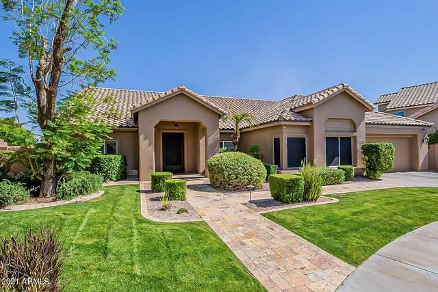 3747 E Kent Drive, Phoenix, AZ 85044 (MLS #6246407) :: Yost Realty Group at RE/MAX Casa Grande
