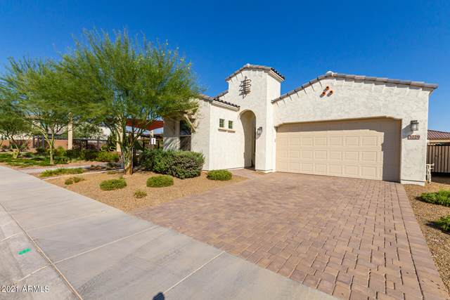 3229 E Los Gatos Drive, Phoenix, AZ 85050 (MLS #6246408) :: Dave Fernandez Team | HomeSmart