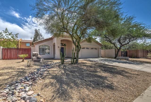 2101 E Sharon Drive, Phoenix, AZ 85022 (MLS #6246425) :: Yost Realty Group at RE/MAX Casa Grande