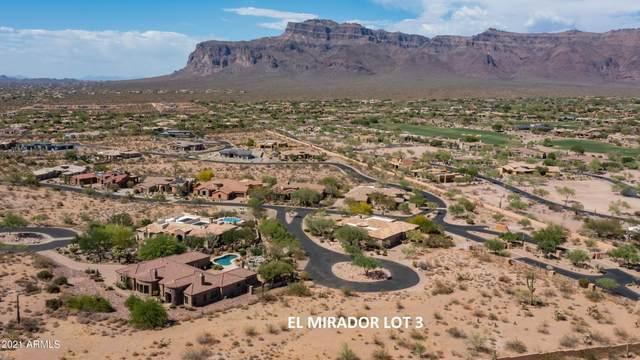 3968 S Two Mule Lane, Gold Canyon, AZ 85118 (MLS #6246441) :: ASAP Realty
