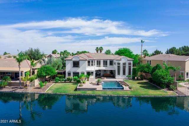 455 E Lynx Way, Chandler, AZ 85249 (MLS #6246459) :: Conway Real Estate