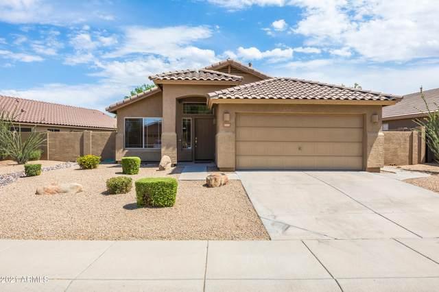 4314 E Tether Trail, Phoenix, AZ 85050 (MLS #6246472) :: Yost Realty Group at RE/MAX Casa Grande