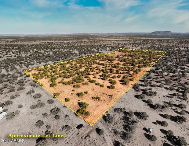 TBD Lot 33, Concho, AZ 85924 (MLS #6246500) :: Fred Delgado Real Estate Group