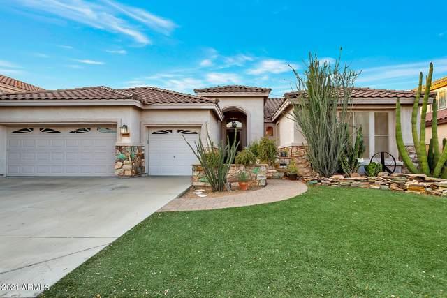 6788 W Skylark Drive, Glendale, AZ 85308 (MLS #6246544) :: Yost Realty Group at RE/MAX Casa Grande