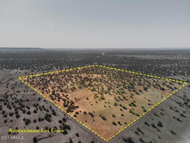 TBD Lot 38, Concho, AZ 85924 (MLS #6246552) :: Fred Delgado Real Estate Group