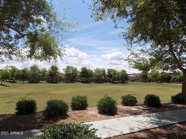 2034 N 77TH Drive, Phoenix, AZ 85035 (MLS #6246576) :: Selling AZ Homes Team