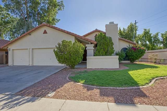 2994 N Benson Lane, Chandler, AZ 85224 (MLS #6246655) :: Yost Realty Group at RE/MAX Casa Grande