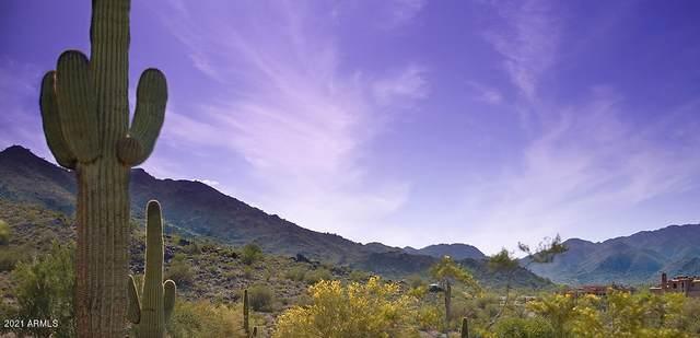 3551 N Pepper Grass Way, Buckeye, AZ 85396 (MLS #6246672) :: Keller Williams Realty Phoenix