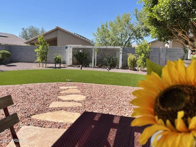 2511 W Maldonado Road, Phoenix, AZ 85041 (MLS #6246691) :: Yost Realty Group at RE/MAX Casa Grande