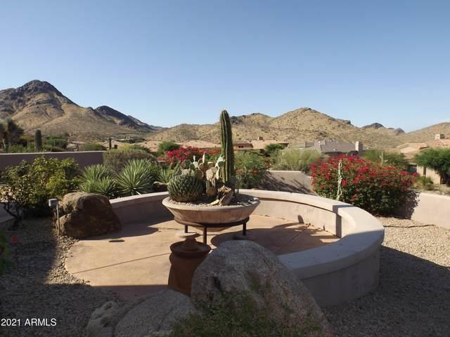 11027 E Desert Vista Drive, Scottsdale, AZ 85255 (MLS #6246714) :: Yost Realty Group at RE/MAX Casa Grande