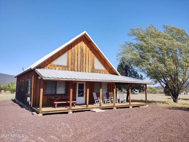 129 N Hashknife Drive, Young, AZ 85554 (MLS #6246764) :: Yost Realty Group at RE/MAX Casa Grande