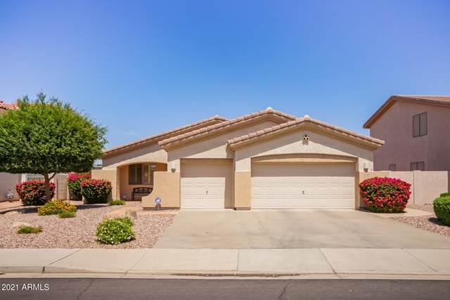 3127 N 145TH Lane, Goodyear, AZ 85395 (MLS #6246767) :: The Luna Team