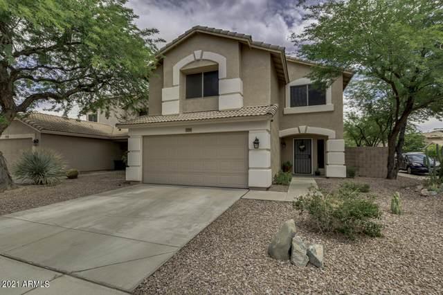 2258 E Parkside Lane, Phoenix, AZ 85024 (MLS #6246773) :: Yost Realty Group at RE/MAX Casa Grande