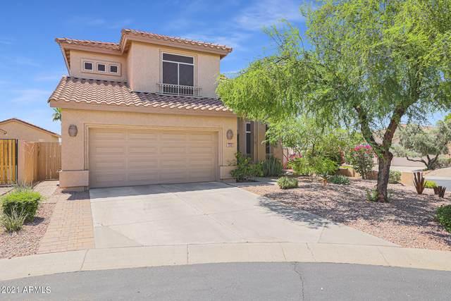 1235 E Captain Dreyfus Avenue, Phoenix, AZ 85022 (MLS #6246803) :: Executive Realty Advisors