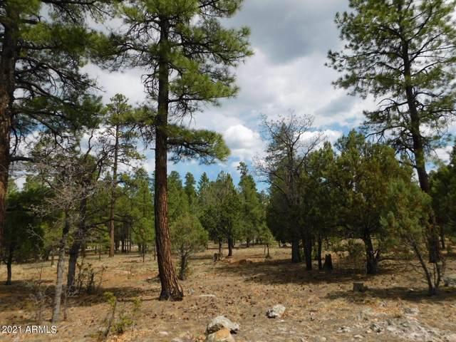 3629 Timberline Drive, Happy Jack, AZ 86024 (MLS #6246811) :: The Copa Team | The Maricopa Real Estate Company