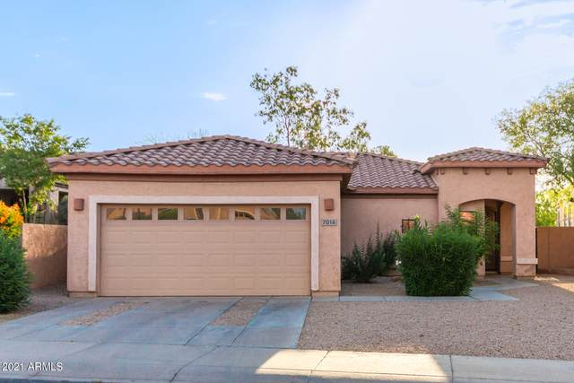7014 S 30TH Street, Phoenix, AZ 85042 (MLS #6246813) :: Klaus Team Real Estate Solutions