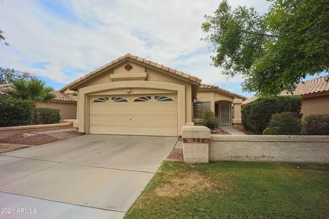 104 S Oak Street, Chandler, AZ 85226 (MLS #6246817) :: Yost Realty Group at RE/MAX Casa Grande