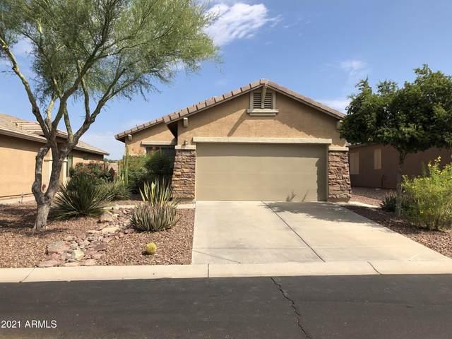 1676 W Morse Drive, Anthem, AZ 85086 (MLS #6246843) :: Conway Real Estate