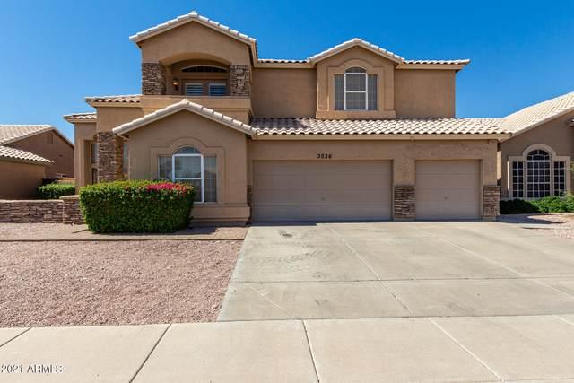3036 E South Fork Drive, Phoenix, AZ 85048 (MLS #6246846) :: Yost Realty Group at RE/MAX Casa Grande