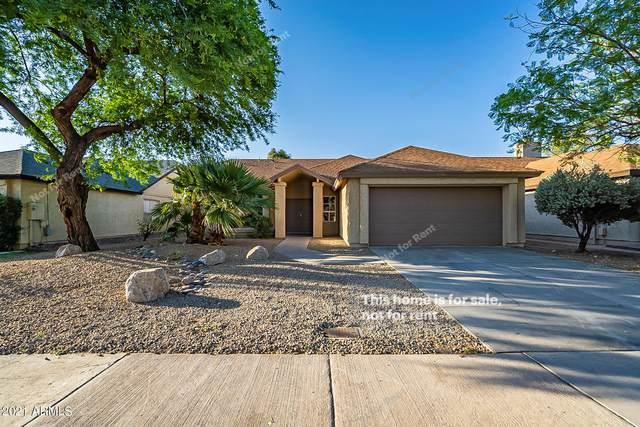 3826 E Waltann Lane, Phoenix, AZ 85032 (MLS #6246858) :: Yost Realty Group at RE/MAX Casa Grande