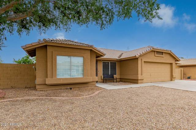 10949 E Becker Lane, Scottsdale, AZ 85259 (MLS #6246909) :: Yost Realty Group at RE/MAX Casa Grande