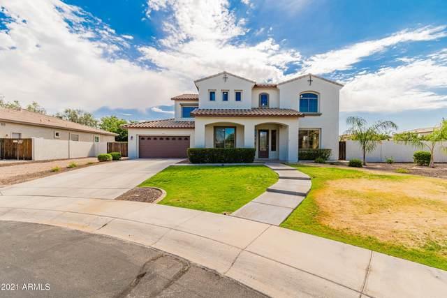 14924 N 183RD Drive, Surprise, AZ 85388 (MLS #6247020) :: Yost Realty Group at RE/MAX Casa Grande