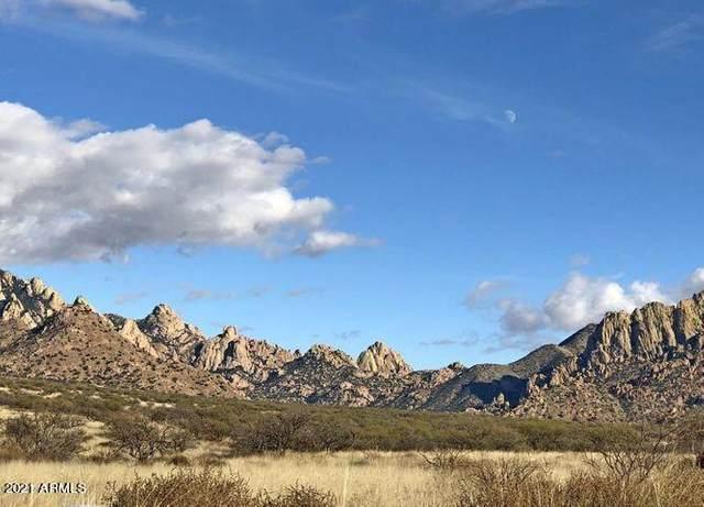 TBD E Kingbird Trail, Saint David, AZ 85630 (MLS #6247041) :: Yost Realty Group at RE/MAX Casa Grande