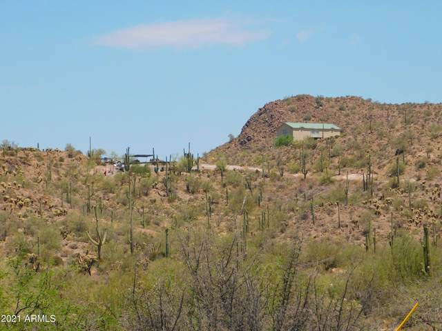 3376 N Elephant Butte Road, Queen Valley, AZ 85118 (MLS #6247045) :: Yost Realty Group at RE/MAX Casa Grande
