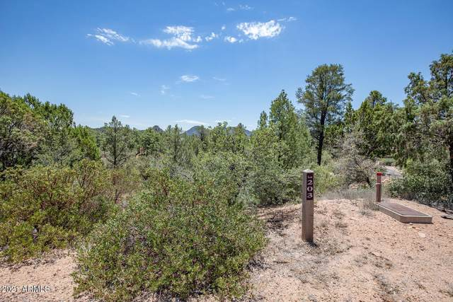 3001 E Hanging Rock, Payson, AZ 85541 (MLS #6247060) :: Service First Realty