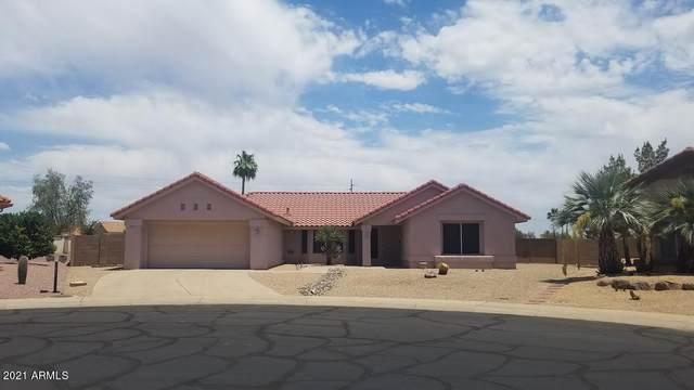20619 N 149TH Avenue, Sun City West, AZ 85375 (MLS #6247085) :: Maison DeBlanc Real Estate