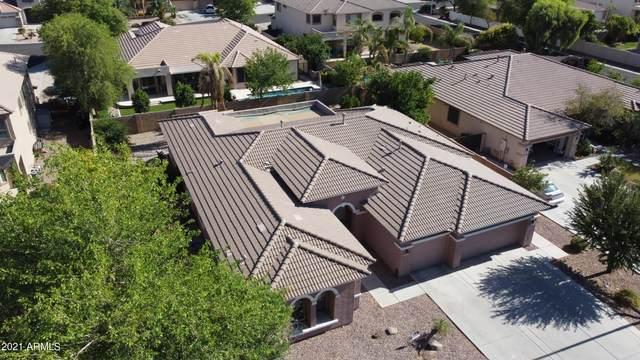 2951 E Beechnut Place, Chandler, AZ 85249 (MLS #6247087) :: Executive Realty Advisors