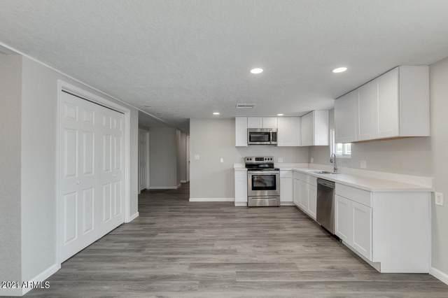 1562 S Desert View Place, Apache Junction, AZ 85120 (MLS #6247109) :: Midland Real Estate Alliance