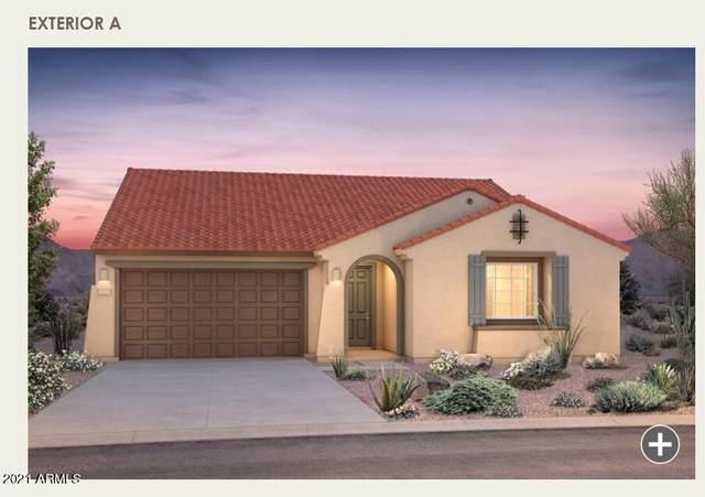 19642 W San Juan Avenue, Litchfield Park, AZ 85340 (MLS #6247120) :: Yost Realty Group at RE/MAX Casa Grande