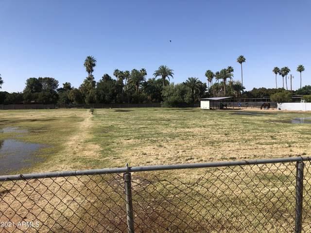 5035 W Port Au Prince Lane, Glendale, AZ 85306 (MLS #6247129) :: Selling AZ Homes Team